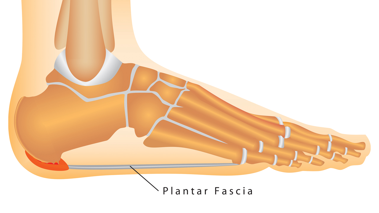 Plantar Fascia Stretches